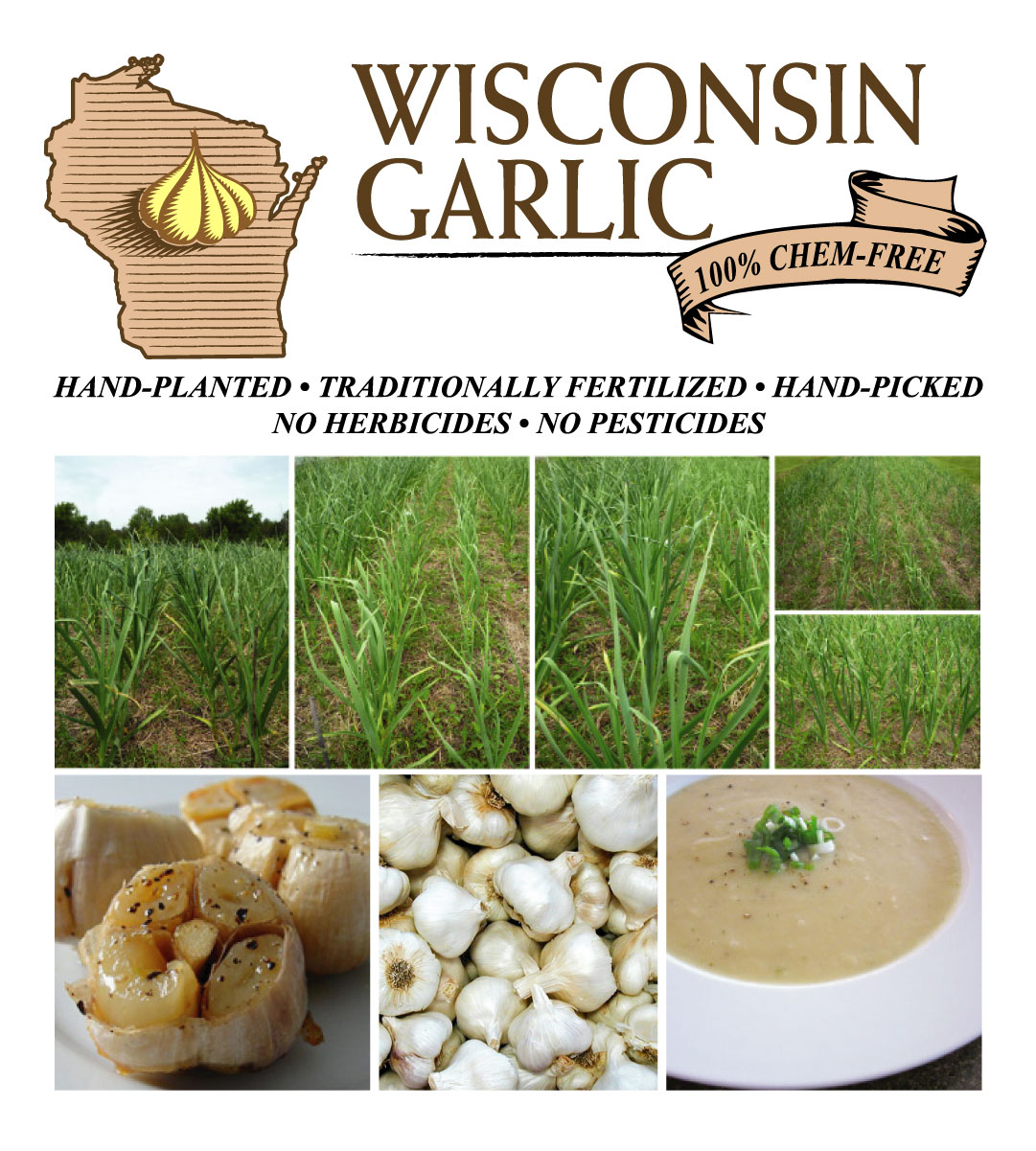 https://instantimagingcorp.com/products/wisconsingarlic/